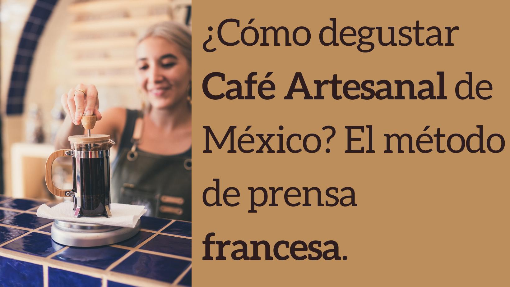 0e514-degustar-cafe-artesanal-mexico-prensa-francesa.png