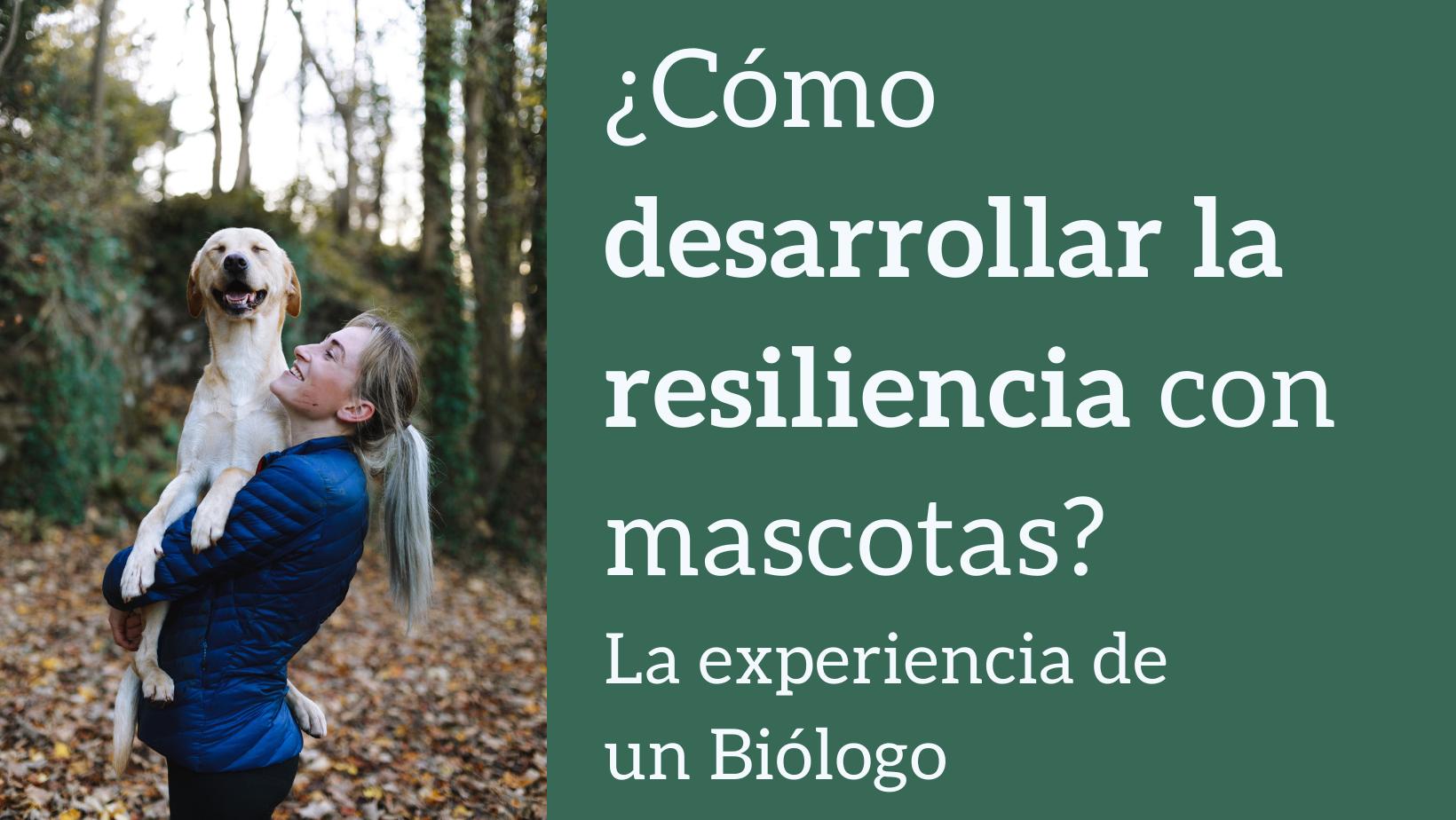 a98bf-como-desarrollar-resiliencia-mascotas-bweb.png