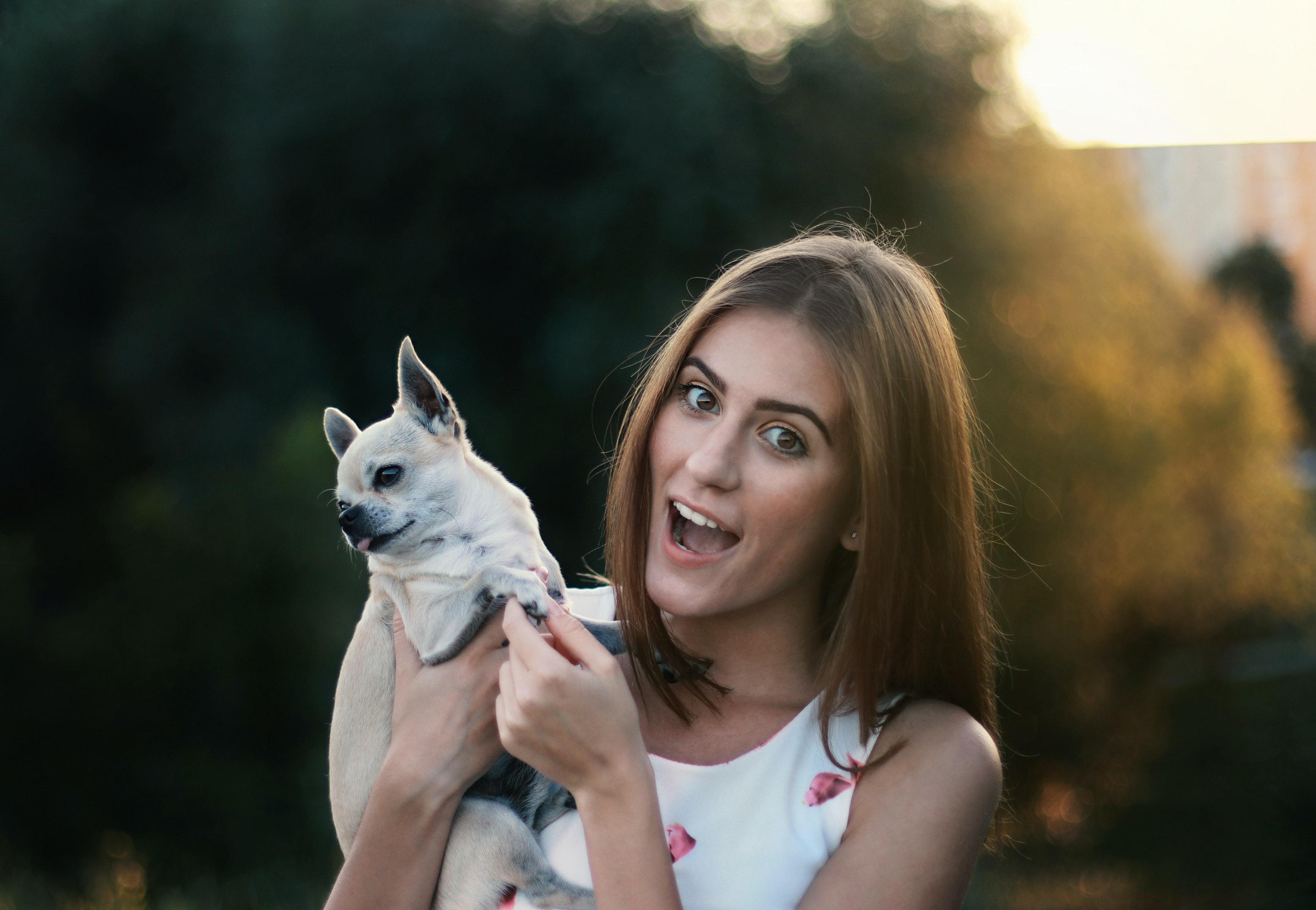 Desarrollar la resiliencia con tus mascotas bweb